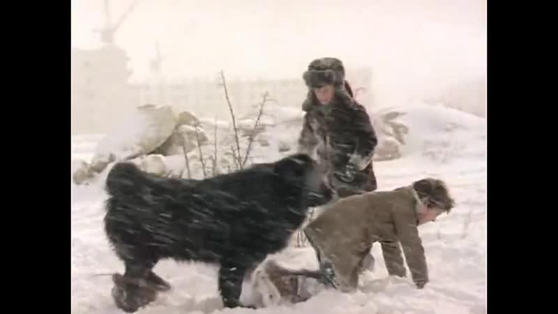 Ира Шахнович - Ты, да я, да мы с тобой (Песня из кинофильма «Тихие тpоечники», 1980)