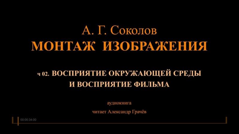 Соколов МОНТАЖ Аудиокнига ч 02 ВОСПРИЯТИЕ ОКРУЖАЮЩЕЙ СРЕДЫ И ВОСПРИЯТИЕ ФИЛЬМА