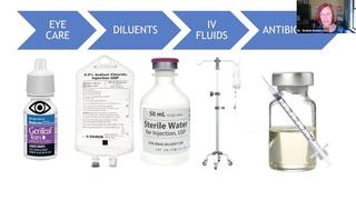 Нехватка анестетиков в приютах после COVID-19/ Navigating Anesthetic Drug Shortages in Shelters After COVID