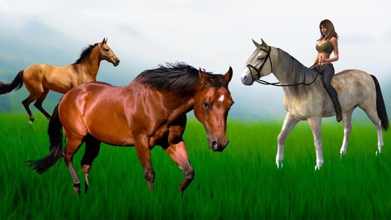 Первое одомашнивание лошади. Ботайская или ямная культура Новые загадки праиндоевропейского языка.