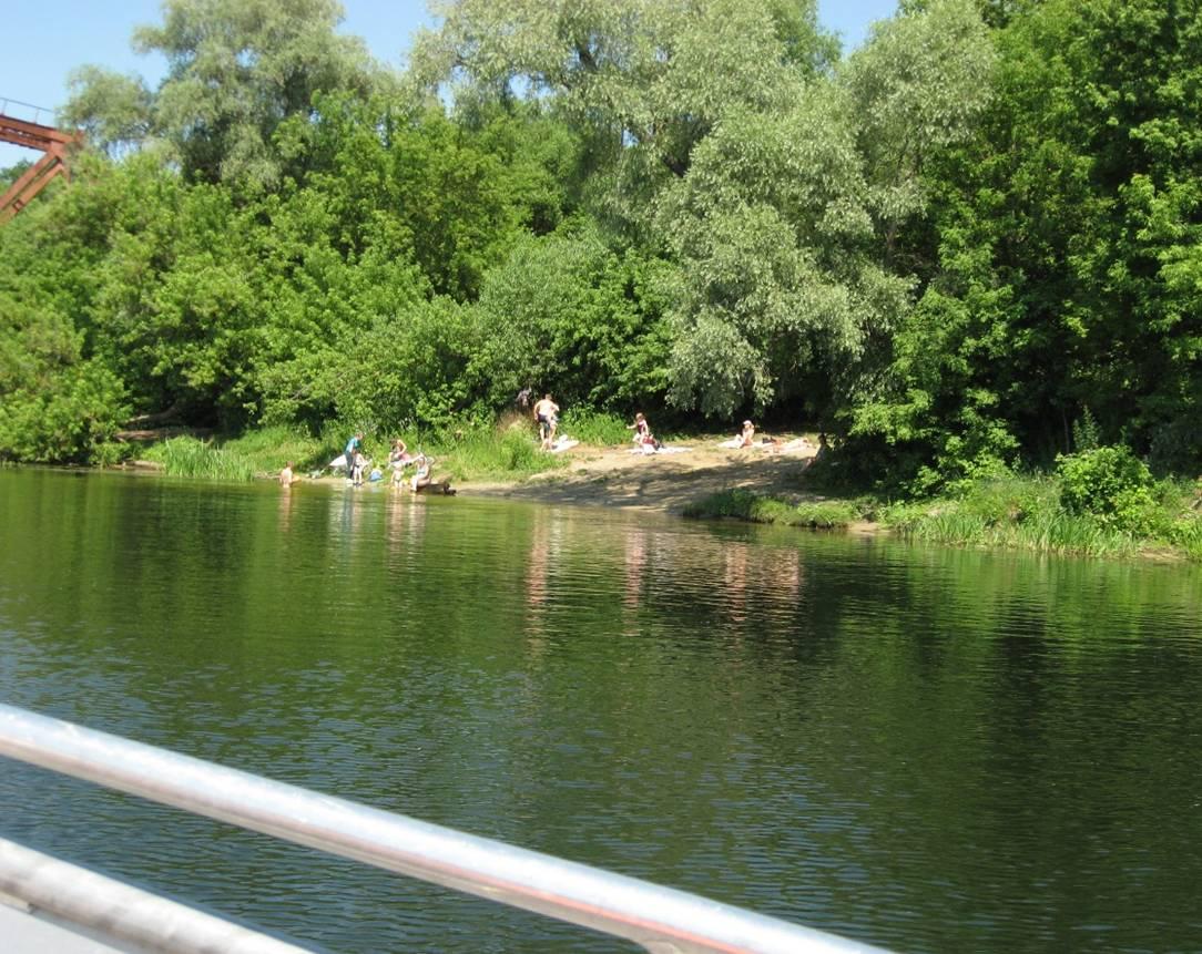 В Курской области меньше чем за месяц утонули 12 человек