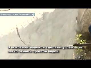 Егор Лесной и его команда в очередной раз на своей примере показывают, как нужно относиться к окружающему миру