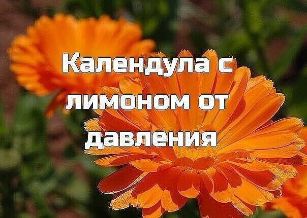 ПОЛЕЗНО ЗНАТЬ ХОЗЯЙКЕ!!!!