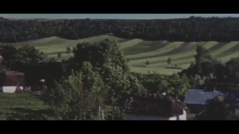Цветная кинохроника Дивизия СС Викинг 17 армии Вермахта в районе городов Жовква и Збараж Галиция Июнь июль 1941