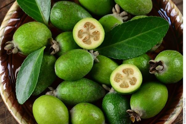 ФЕЙХОА:ПОЛЕЗНЫЕ СВОЙСТВА И ВКУСНЫЕ РЕЦЕПТЫ Фейхоа один из немногих фруктов, до сих пор имеющих четко выраженную сезонность. Сезон фейхоа начинается в середине сентября, а заканчивается в начале