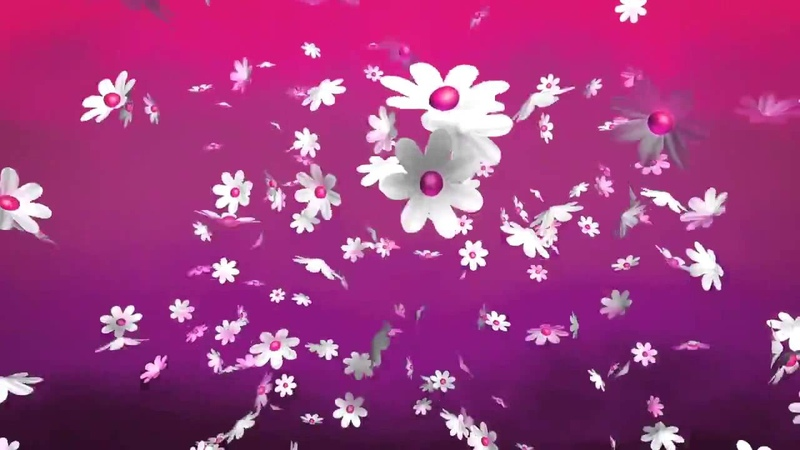 Цветочный фон Floral background