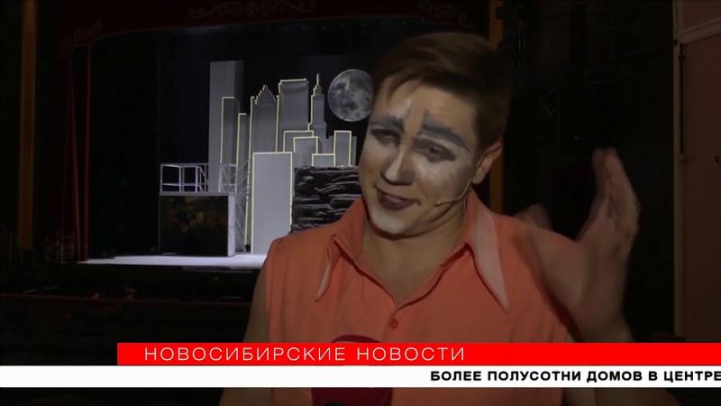 Новосибирский театр поселил кошку Киплинга в каменных джунглях Новосибирские новости