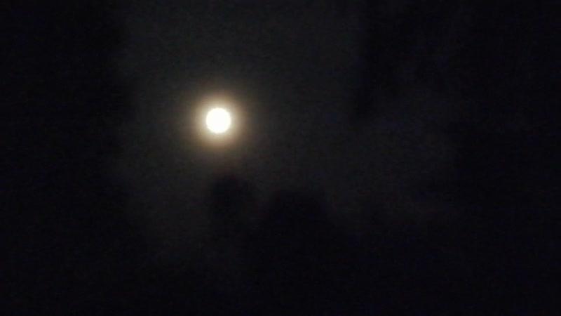 Красота ночи