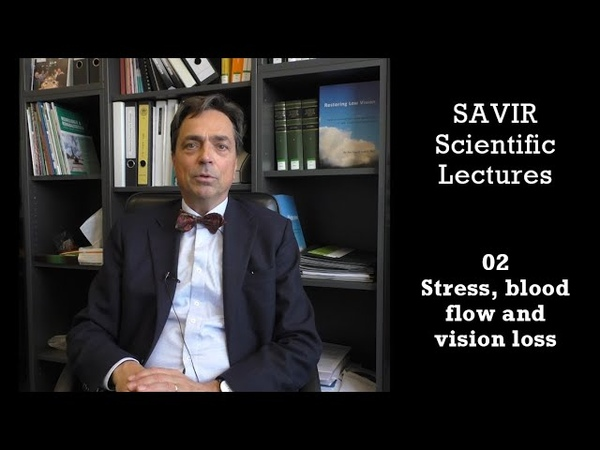 Savir Scientific Lectures 02 Stress blood flow and vision loss
