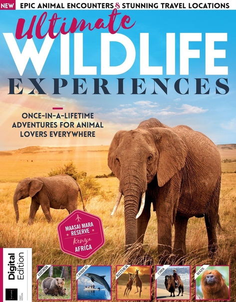 2020-06-27 Ultimate Wildlife Experiences