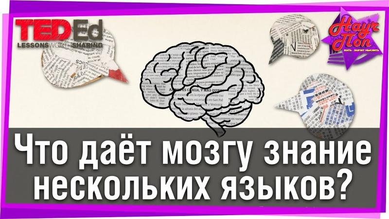 Что даёт мозгу знание нескольких языков TED Ed на русском