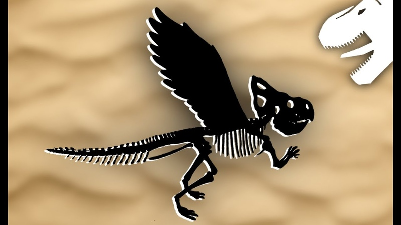 The Story of the Dinosaur Thought to be a Griffin