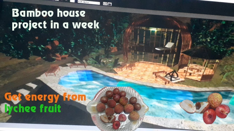 Project bamboo house in a week Get energy from lychee fruit