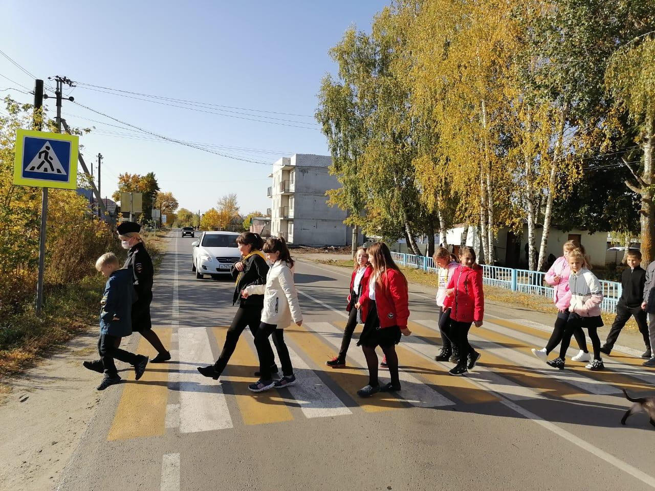В Петровске автоинспекторы продолжают изучать со школьниками правила дорожной безопасности