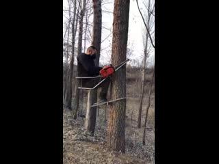 Climbing Tree Stand