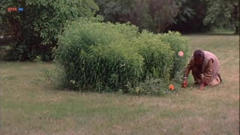 Тайна Чёрных дроздов 1983 детектив реж Вадим Дербенёв