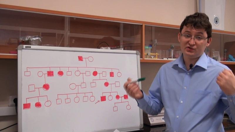 Анализ родословных Урок 7 Задача 7 5 быстрый разбор в конце видео
