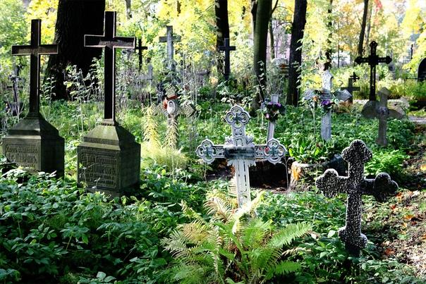 Город мёртвых - Это самое большое кладбище Европы. Второе по величине в мире, - с необъяснимой гордостью говорит водитель и смотрит на нас, ожидая реакции. Мы вразнобой киваем: что тут скажешь.