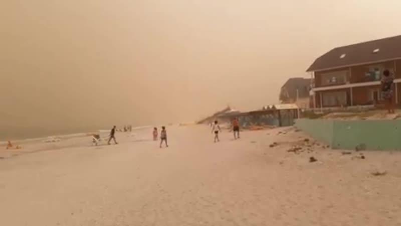 Пылевая буря в районе поселка Кирилловка (Запорожская область, Украина, 10 августа 2019).