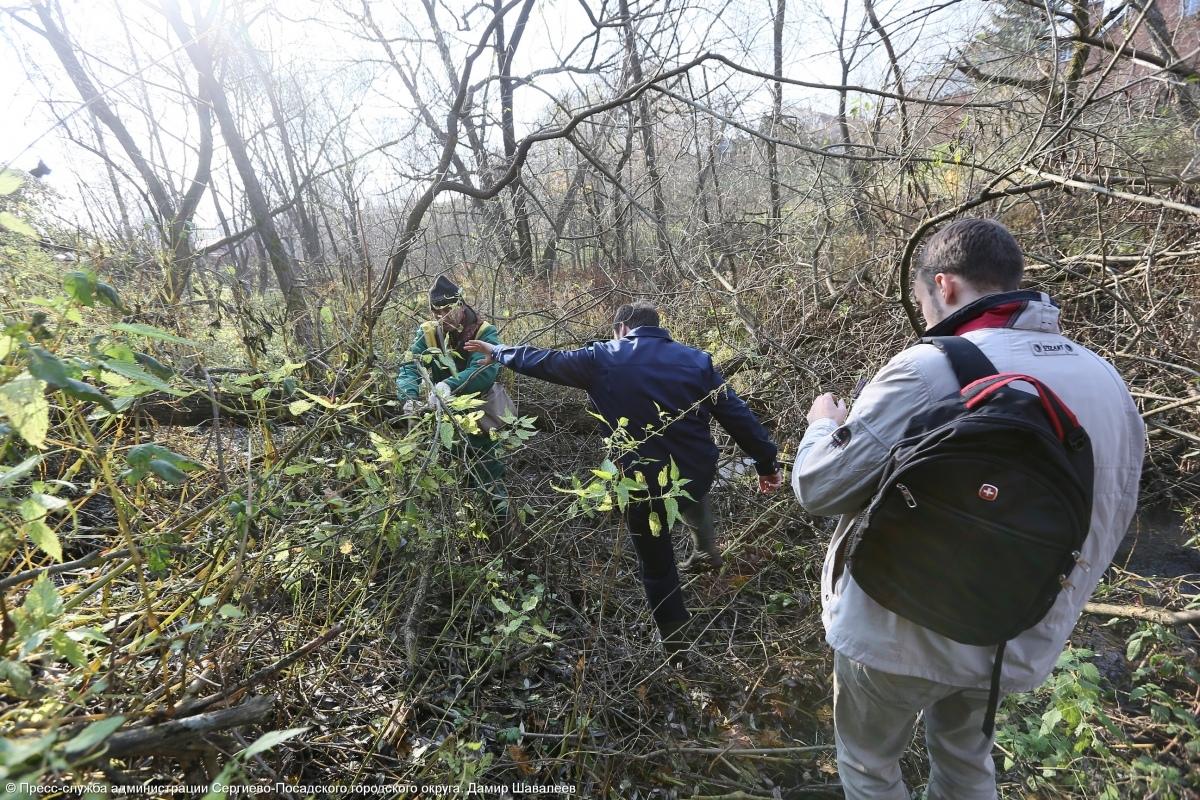 Экологические рейды проходят в Сергиево-Посадском городском округе  В