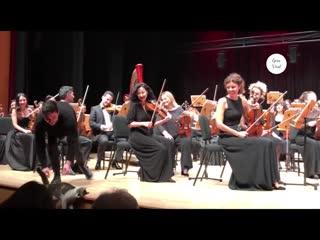 Бездомная кошка из Стамбула вышла на сцену во время выступления оркестра NR