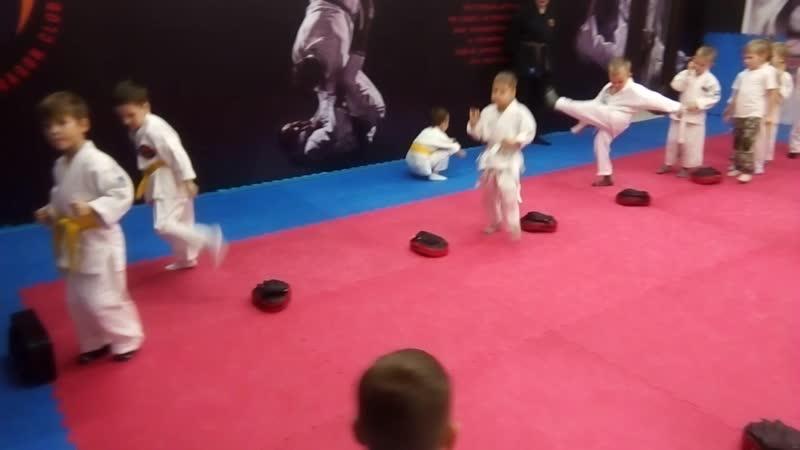 Комплексная тренировка единоборствами с детьми 4-5 лет. Ч.2.