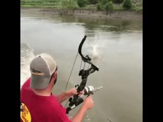 Соколиный глаз на рыбалке