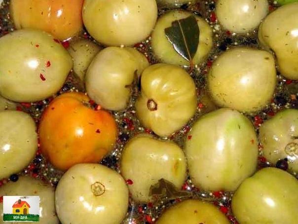 КОНСЕРВАЦИЯ ЗЕЛЕНЫХ ПОМИДОР СОВЕТСКИМ МАГАЗИННЫМ СПОСОБОМ . Ингредиенты .на 3-х литровую банку: 2 кг зеленых помидоров половинка или целый маленький стручок острого перца 2 лавровых листа 6-8