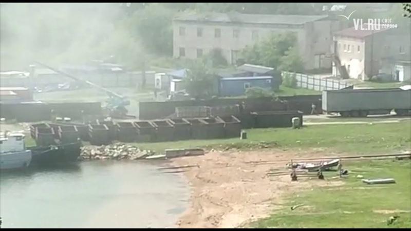 Косаток из бухты Средней в Приморье увозят