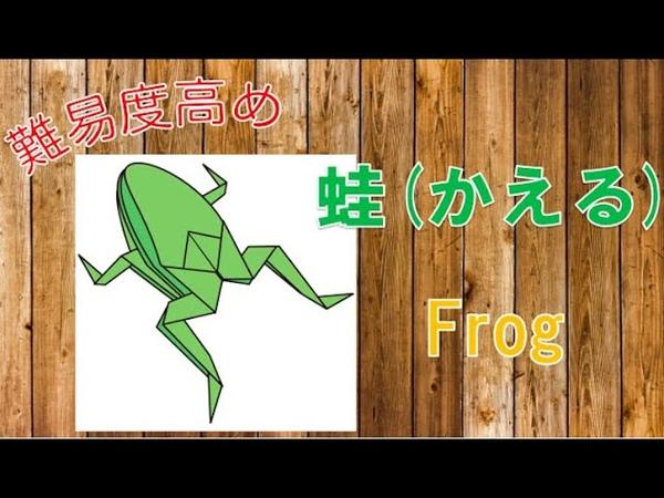 折り紙のカエルの折り方!難しいけどリアル!膨らませる立体の作り方-Origami Frog
