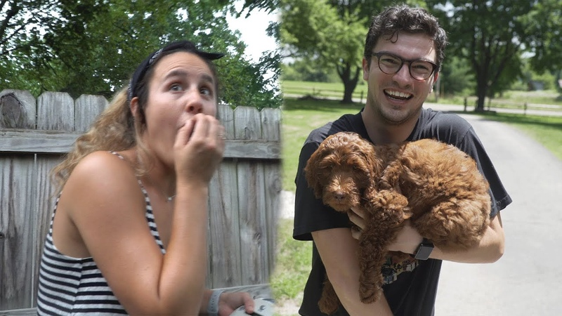 Surprising my Friends with my New Puppy!
