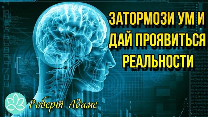 Роберт Адамс-Затормози ум и дай проявиться реальности(Аудиокнига)
