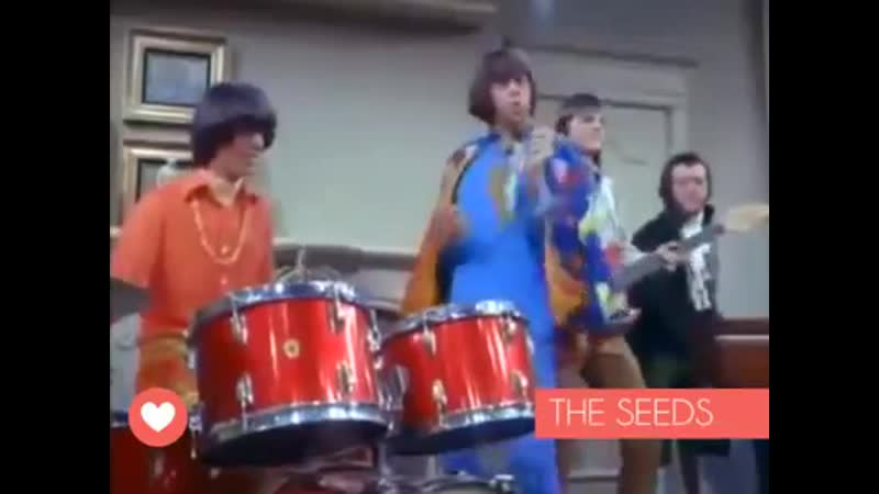 PUSHIN 'TOO HARD - THE SEEDS 1965
