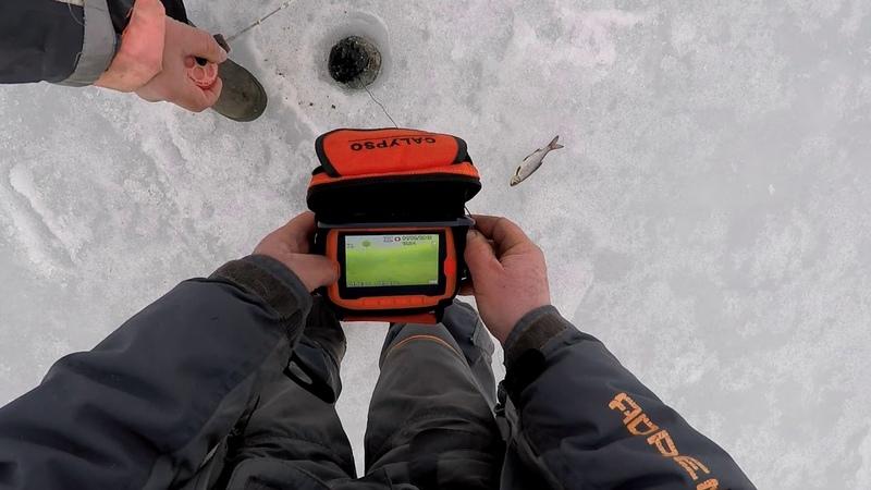 Рыбалка Буксировщик Койра Калипсо Плотва Подводная камера Калипсо Нашли рыбу