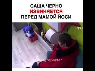 Саша Черно извинилась перед мамой Иосифа Оганесяна