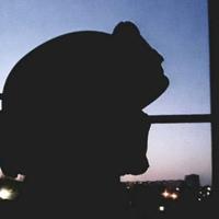 Фото профиля Семена Яновского