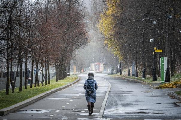 В Ленобласти прогнозируют дожди с мокрым снегом и ...