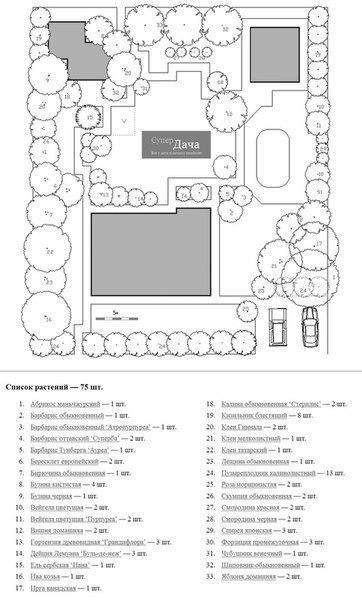 Планирование дачного сада План дачного участкаДачный сад - это ландшафтное и садовое решение для дачного участка. В большой части случаев - дачный участок изначально представляет собой