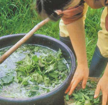 Как сделать жидкое удобрение из сорняков