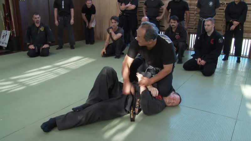 Дзю Дзюцу, Будзинкан Будо Тайдзюцу. Техники самообороны.