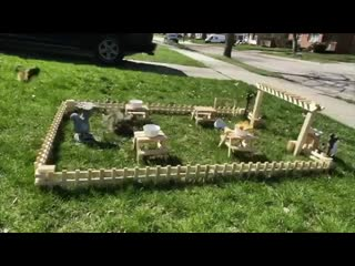 Guy in Quarantine Builds a Tiny Restaurant for the Squirrels in His Yard