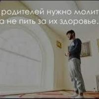 Кутбеков Елшат