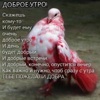 Уренцов Александр