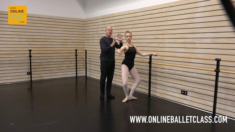 Ballet Class Plié, Coordination of Arms and Legs