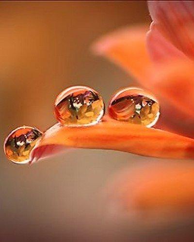 Жизнь слишком коротка и бесценна Так что вдохновляйся всем, в чем чувствуешь хоть каплю вдохновения.© Гвинет