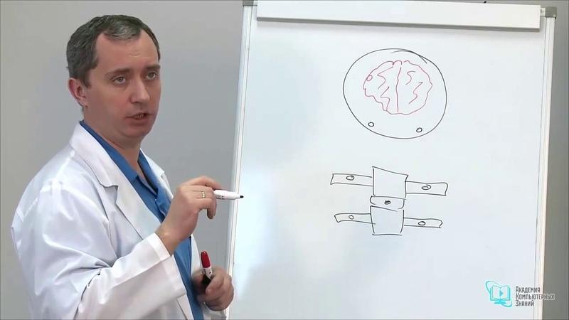 Секреты доктора Шишонина Лечение гипертонии Повышенное давление