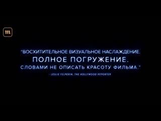 """Акварель - документальный фильм о воде. Трейлер на """"Медузе"""""""